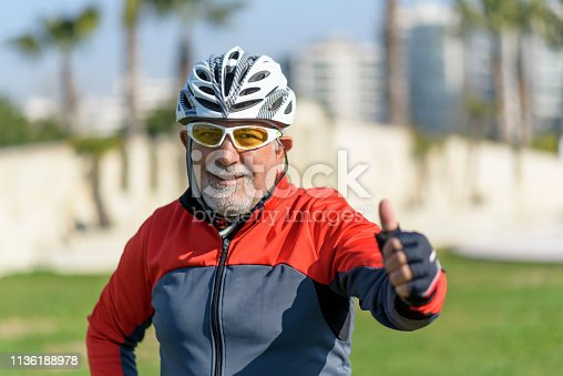 1029243348 istock photo Portrait Of Senior Male Cyclist 1136188978