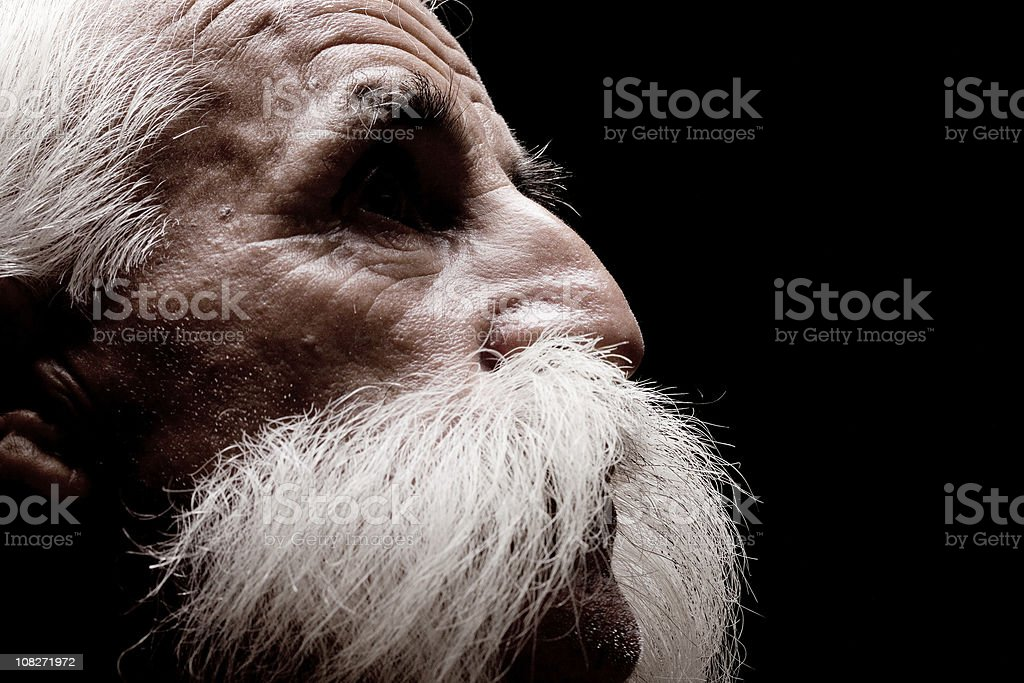 Portrait Of Senior Man With White Big Handle Bar Mustache royalty-free stock photo