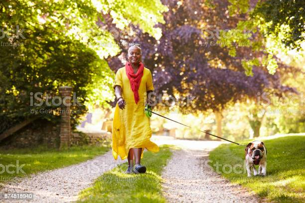 Portrait of senior woman walking pet bulldog in countryside picture id874818940?b=1&k=6&m=874818940&s=612x612&h=rhcjr4wp10ggchxtkfeegw2 2jaaxrkn3trahlvi7 q=