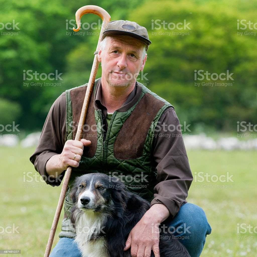 portrait of Shepherd with his dog, flog in the back royalty-free stock photo