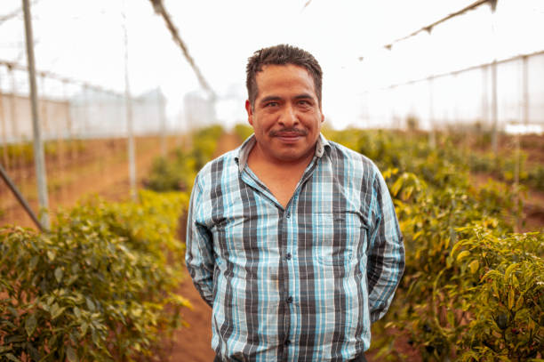 Portrait of smiled farm worker stock photo