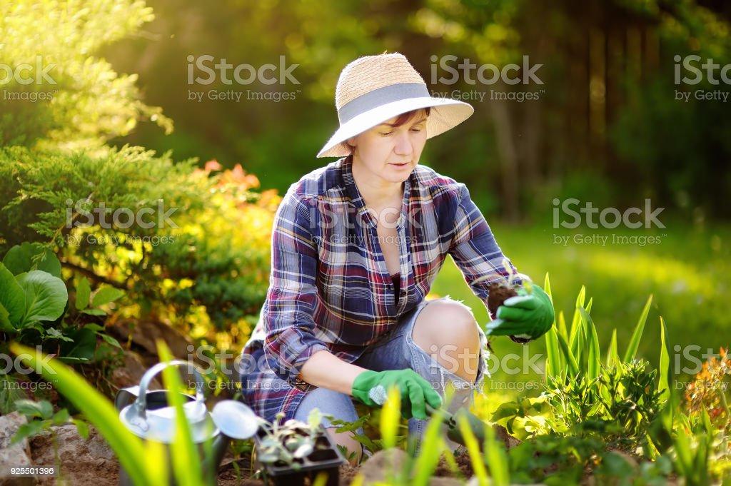 Portrait of smiling beautiful middle age/mature female gardener stock photo