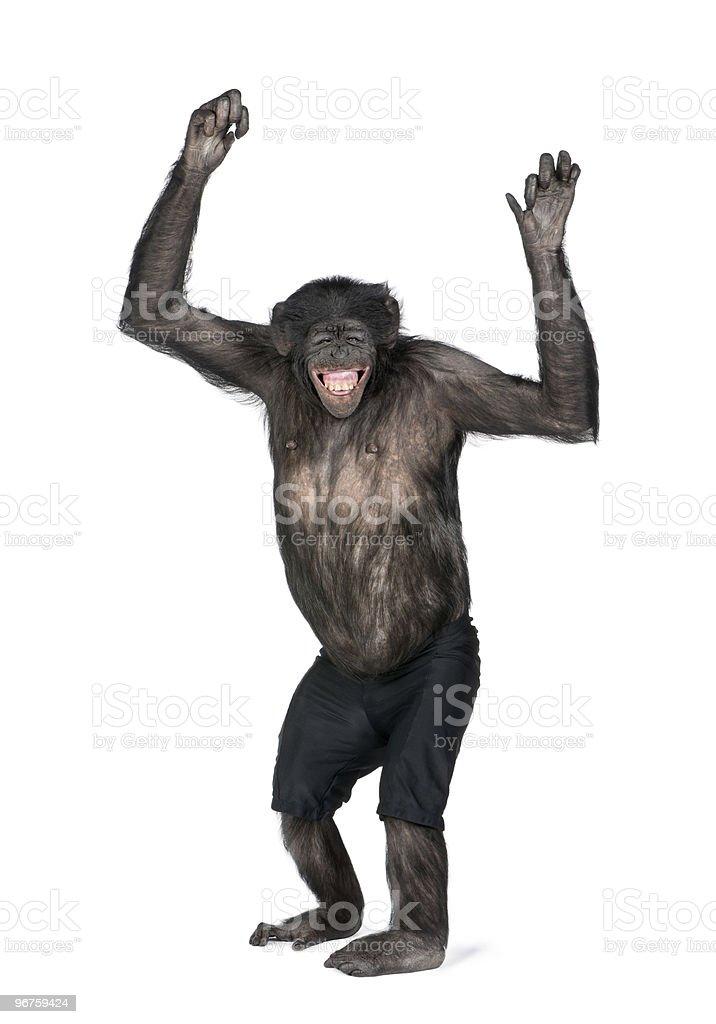 Porträt eines lächelnden Schimpansen-Gattung in shorts mit Arme hoch – Foto