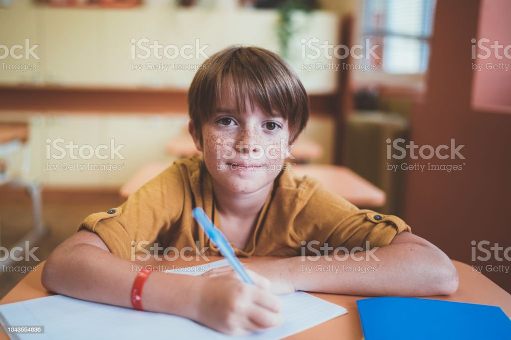 Portrait of smiling schoolboy with freckles in the classroom Schoolboy in the classroom writing in the notebook 6-7 Years Stock Photo