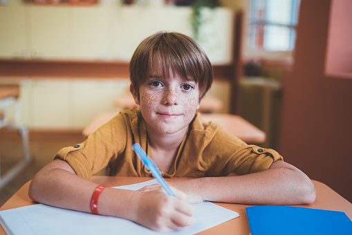Portrait Of Smiling Schoolboy With Freckles In The Classroom Stock Photo - Download Image Now