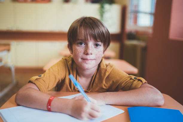 Portrait of smiling schoolboy with freckles in the classroom stock photo