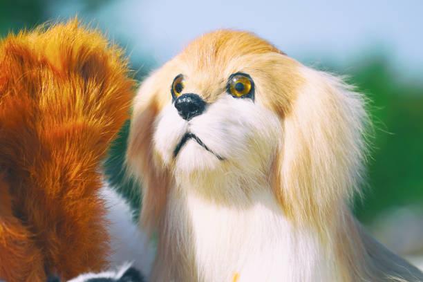 Portrait of soft plush toy dog picture id1069049000?b=1&k=6&m=1069049000&s=612x612&w=0&h=gajjzacgfy 1vmcn2urf 0kttjoa jmktf py3f4s4s=