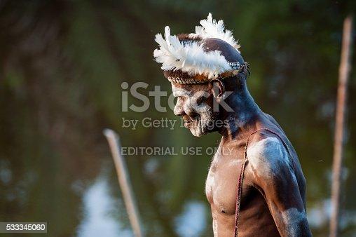 841481956istockphoto Portrait of the Asmat Warrior 533345060