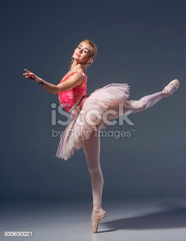 476021886 istock photo Portrait of the ballerina in ballet pose 533630021