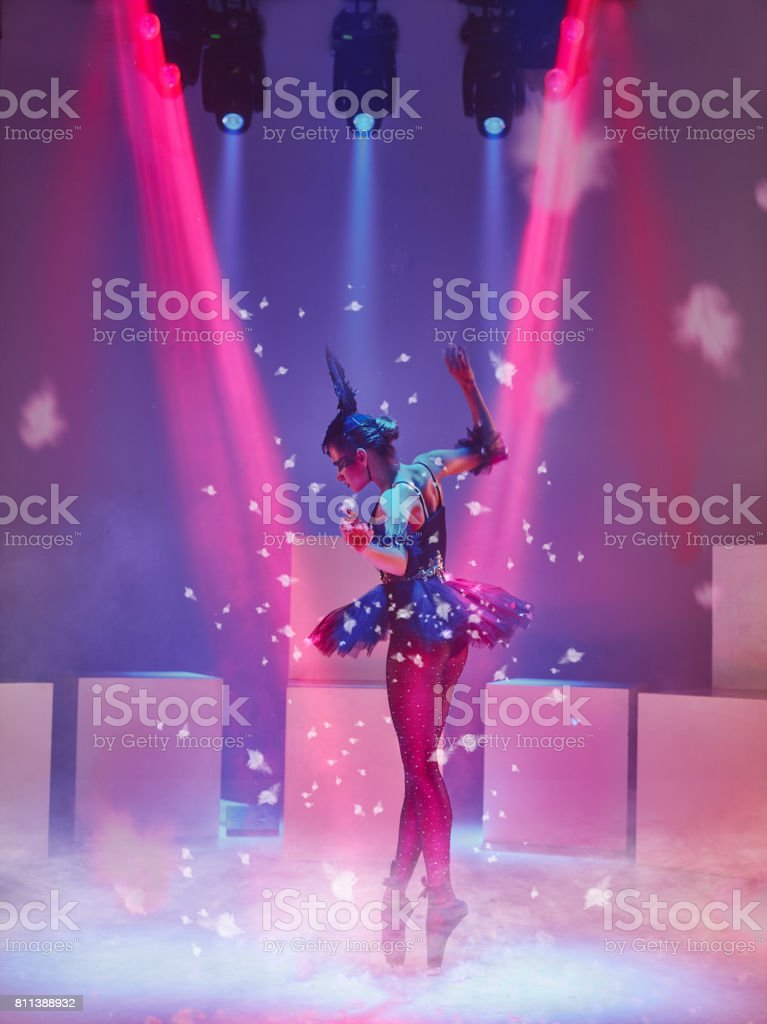 Portrait of the ballerina in the role of a black swan stock photo