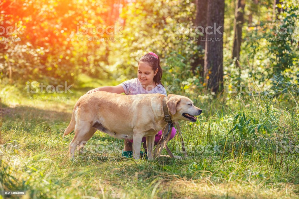 Portrait Of The Happy Young Girl Petting The Labrador