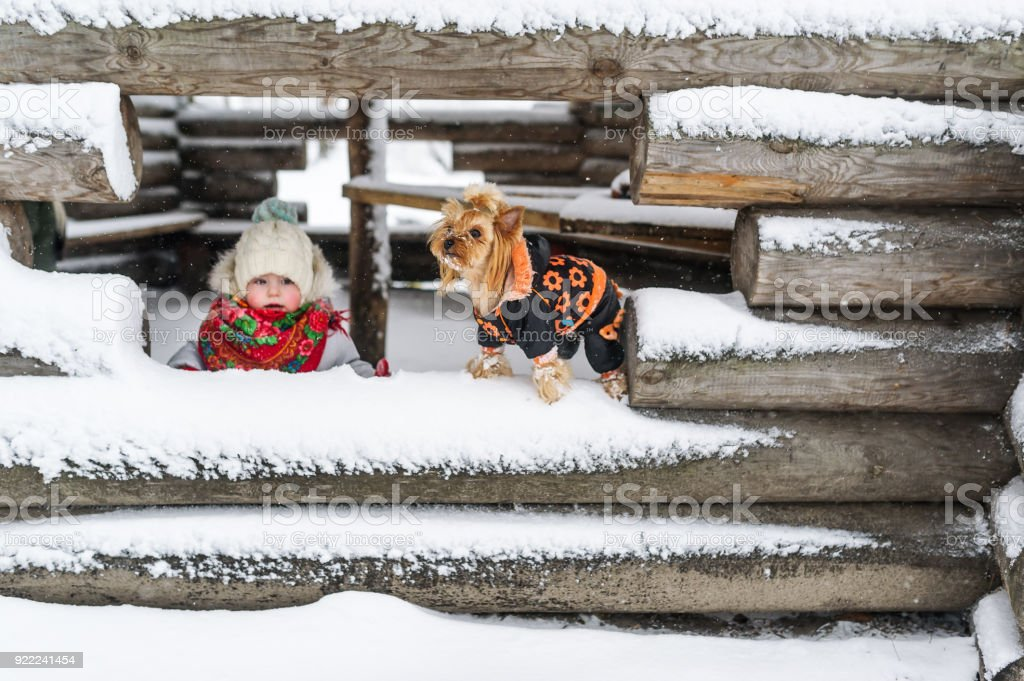 Portrait of the little girl and small dog against the background of the unfinished snow-covered house in the village stock photo