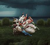 istock Portrait of tropical birds 1286189445