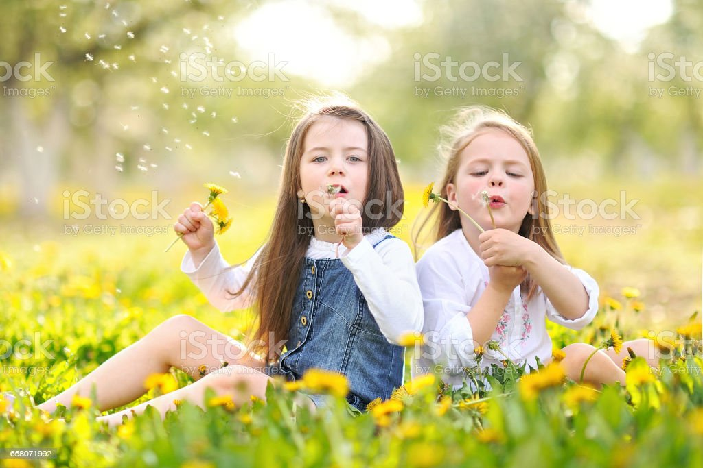 Portrait of two girls in the woods girlfriends royalty-free stock photo