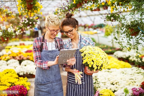 istock Portrait of two happy modern florist girls with eyeglasses and tablet in the greenhouse full of flowers watching video tutorials on the internet. 920782424