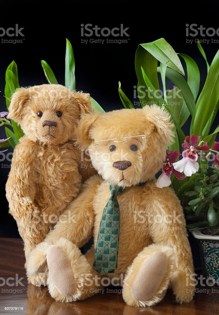 Portrait of Two Light Brown Teddy Bears With Orchids royalty-free stock photo