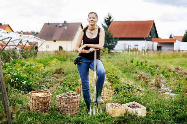 """Portrait Of Urban Farmer Standing With Days Harvest A portrait of an urban farmer Standing Proudly With Her Day""""u2019s Harvest. pitchfork agricultural equipment stock pictures, royalty-free photos & images"""