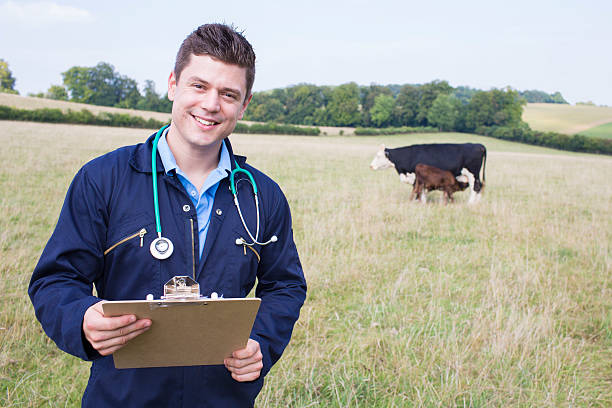 Portrait of vet in field with cattle in background picture id610563244?b=1&k=6&m=610563244&s=612x612&w=0&h=uu4yed65g 8fnbkvcckq0drjiauhatily9qwsysfu2k=