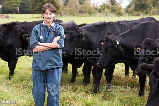 Portrait of vet in field with cattle picture id93290118?b=1&k=6&m=93290118&s=612x612&h=v men2euphvgg9luosfklf7cv7m2sytshlkm0ktrebo=