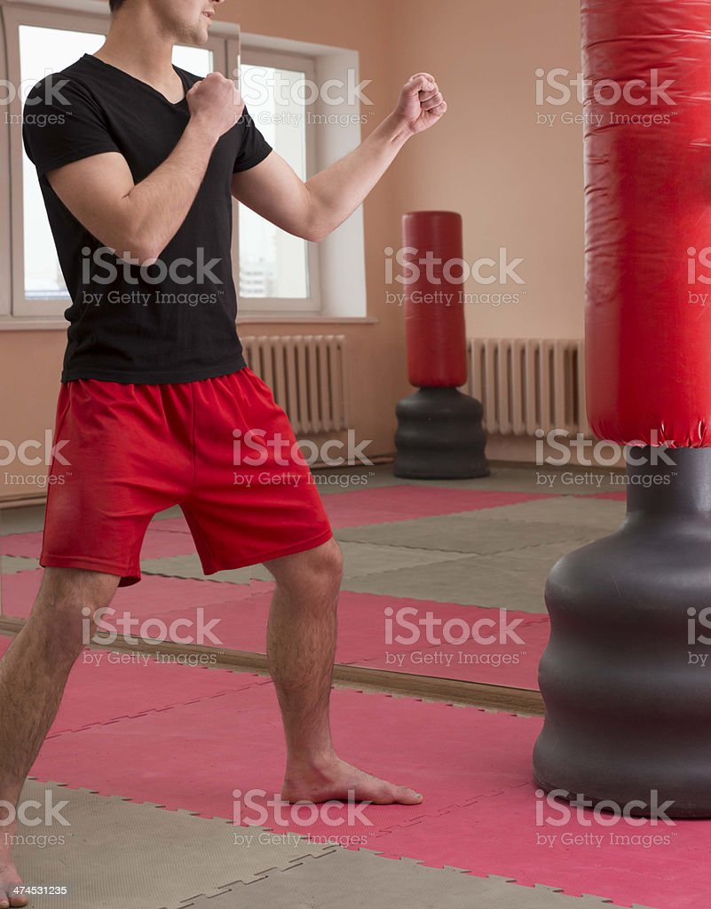 Portrait of young adult  hispanic man boxer training in gym royalty-free stock photo