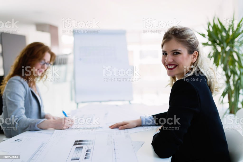 Portrait of young architect woman on meeting royalty-free stock photo