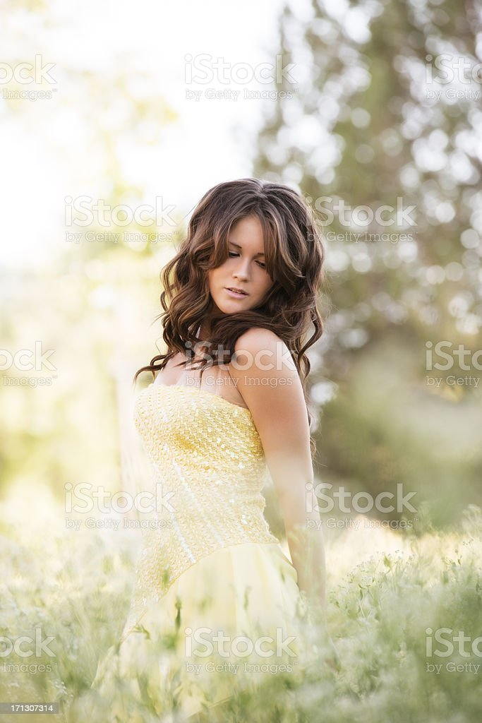 Portrait of young beautiful woman in a meadow royalty-free stock photo