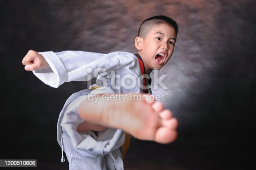 Portrait of young boy doing karate moves