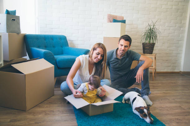 A portrait of young family with a toddler girl and a pet dog moving in new home stock photo