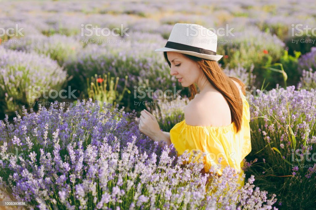 Portrait of young sensual beautiful woman in yellow dress hat on portrait of young sensual beautiful woman in yellow dress hat on purple lavender flower blossom mightylinksfo