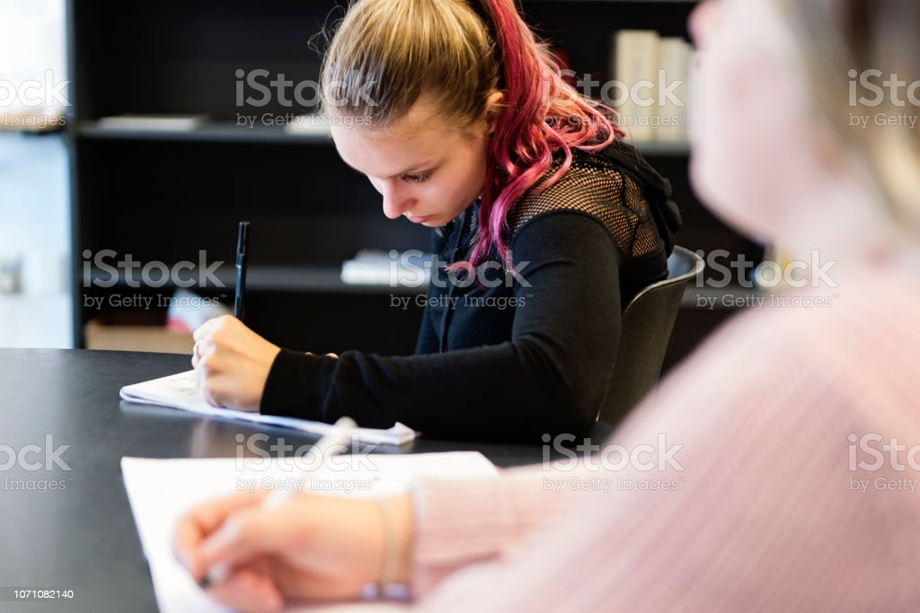 Portrait of young woman College students working in classroom. stock photo