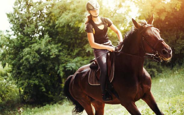 retrato de mujer joven montado en su caballo - equitación fotografías e imágenes de stock