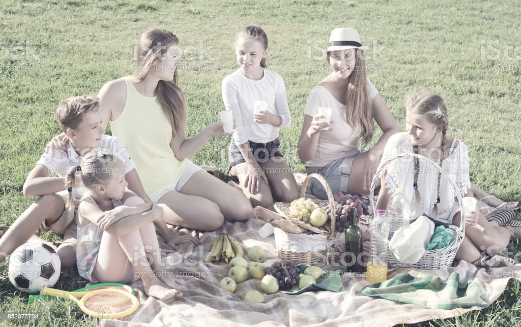 Portrait of young women with children on picnic stock photo