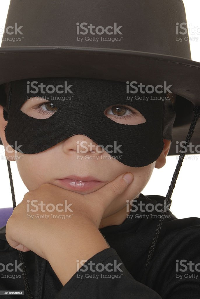 Portrait of Zorro 6 royalty-free stock photo