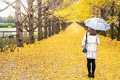 秋に黄色いイチョウの葉が落ちる美しいイチョウの葉の下に立って傘を持つ幸せな若い魅力的なアジアの女性の肖像画背面図。秋のコンセプトで美しさの自然。