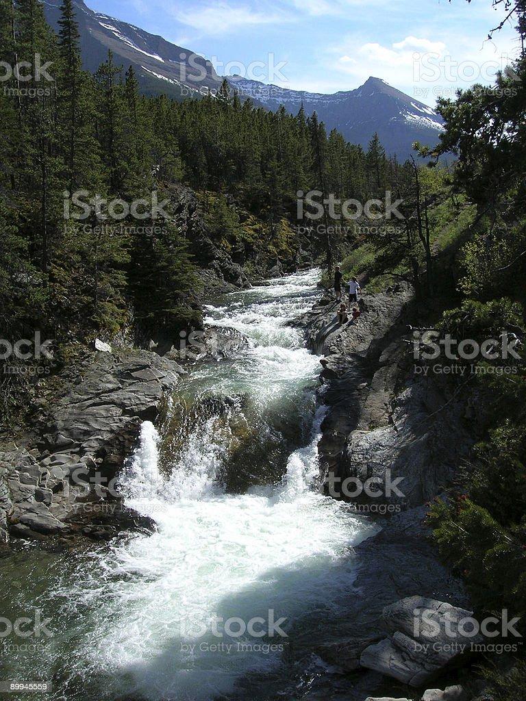 Portrait view of Blakiston Falls against a white background royalty-free stock photo