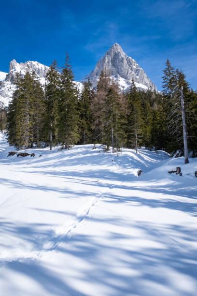 Portrait view over snowy plateau Kaiserau with mountain Admonter Kalbling – Foto