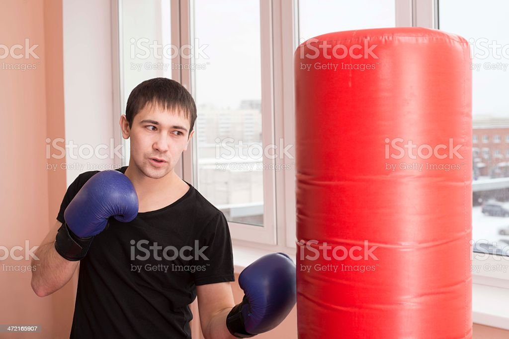 Portrait  young adult latin hispanic man boxer training in gym royalty-free stock photo
