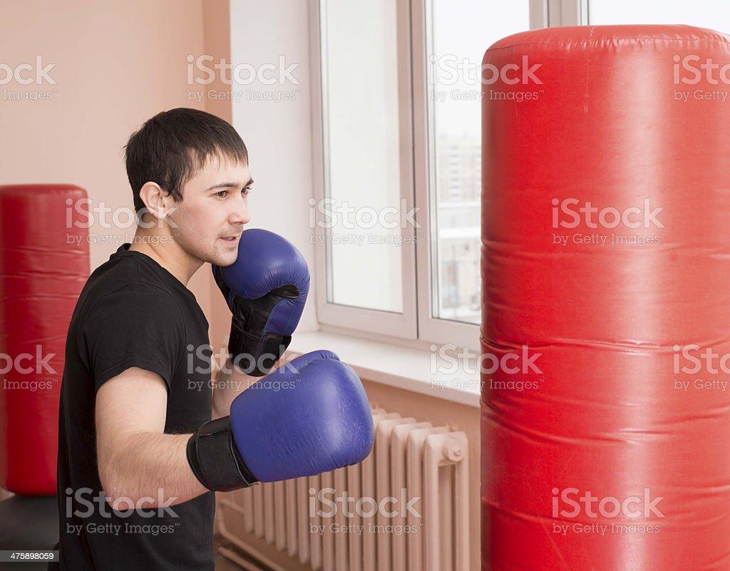 Portrait  young adult latin hispanic man boxer training in gym royalty-free stock photo