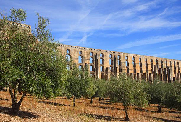 portugal, alentejo region, elvas. unesco world heritage site. - portalegre imagens e fotografias de stock