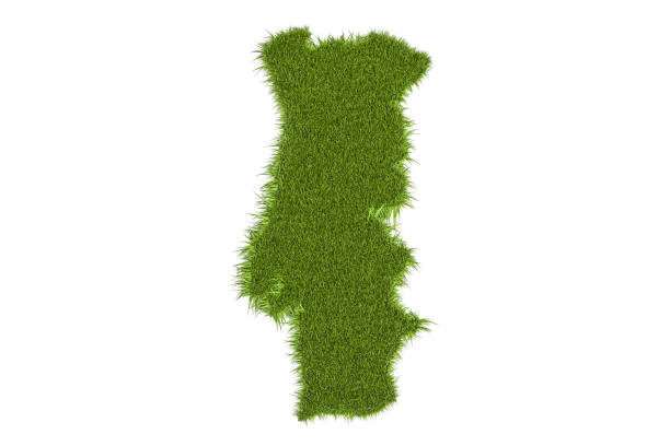 portugal map from green grass, 3d rendering isolated on white background - portugal map imagens e fotografias de stock