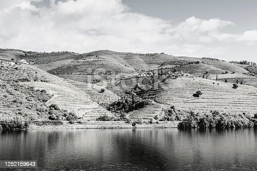 Travel in River Douro region in Portugal among vineyards and olive groves. Viticulture in the Portuguese villages. Black and white photo.