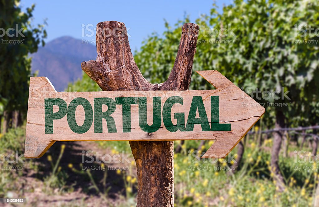 Portugal wooden sign with winery background stock photo