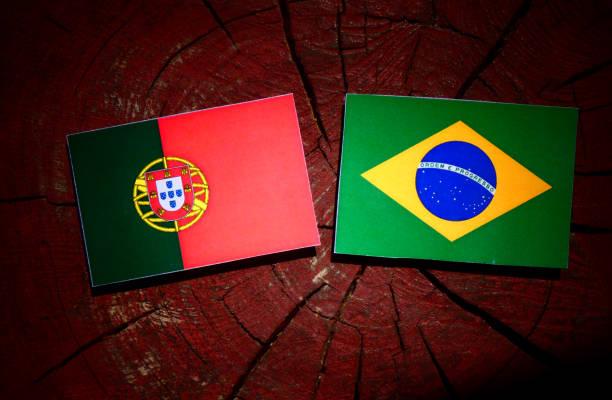 Bandeira portuguesa com bandeira brasileira em um toco de árvore isolada - foto de acervo