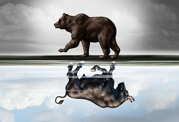 Positive Financial Outlook Positive financial outlook business concept as a bear casting a reflection of a forward moving bull as a hopeful forecast in stock market investing in a 3d illustration style. bull market stock pictures, royalty-free photos & images
