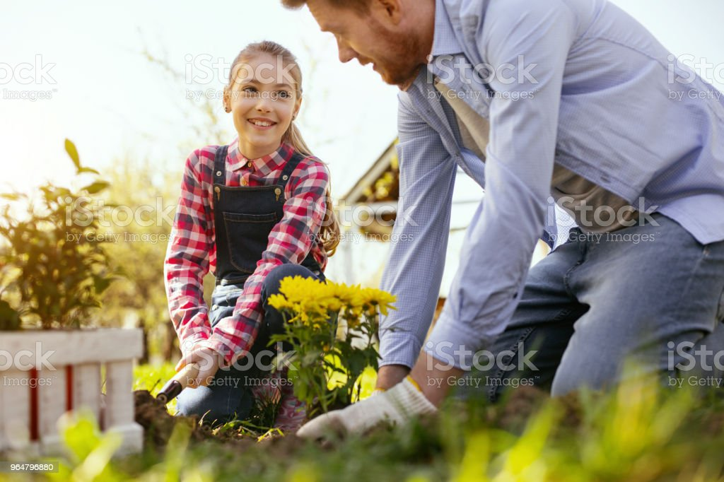 Positive happy girl working together with her father royalty-free stock photo