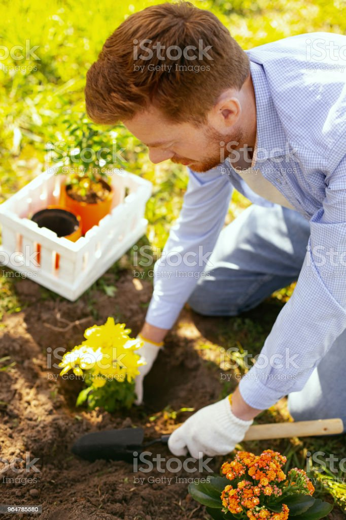 Positive nice man participating in the eco project royalty-free stock photo