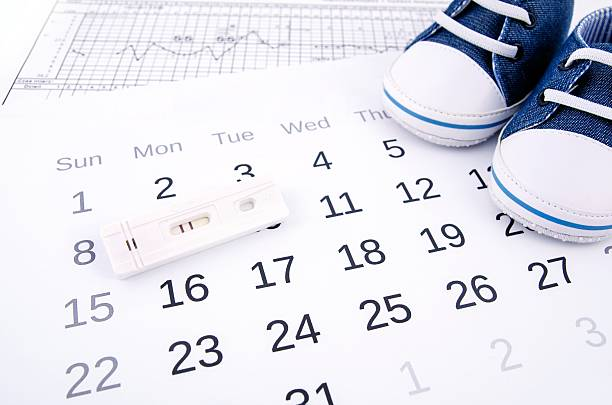Positive pregnancy test on calendar and baby shoes stock photo
