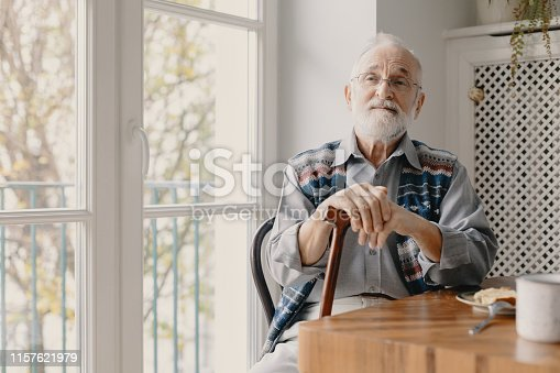 istock Positive senior grandfather with grey hair and beard sitting at home 1157621979