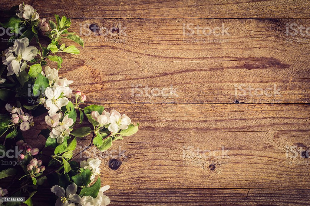 Post Card Template Wooden Background With Apple Flowers Stock Photo ...