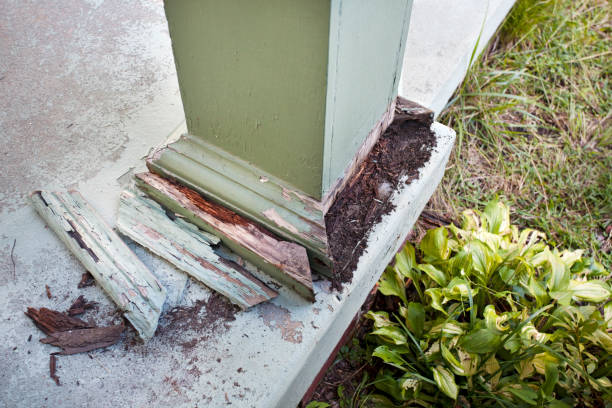 Post Damage Detail of column post damage on home's front porch. termite stock pictures, royalty-free photos & images